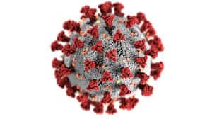 Covid 19 virus close up - to your health nutrition